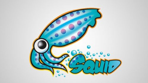 Installing Squid Proxy Server on your VPS and Configure The Proxy on The Client Side